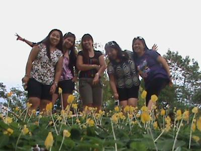 FLOWER GROWS IN BAYONGAN DAM