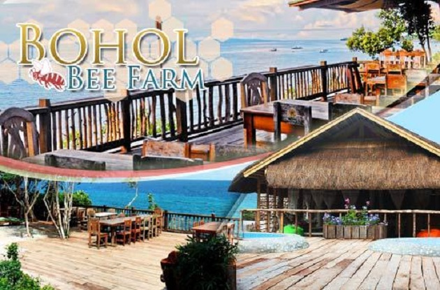 Bohol Plaza Resort Is Located At Dayo Hill Baran Mayacabac Dauis Of Panglao Island The A 4 Star Non Beachfront Perched On
