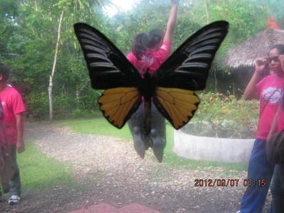 BUTTERFLY DOME .. BILAR
