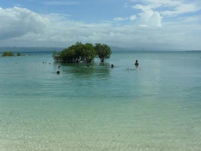 panoramic view of azure blue sky and bohol is